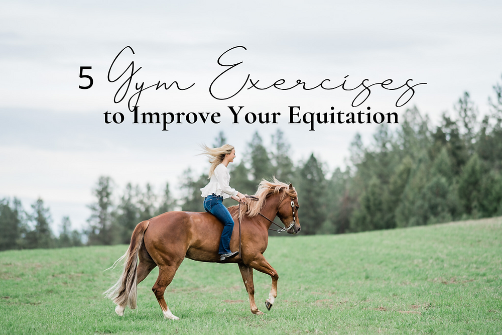 5 Gym Exercises to Improve Your Equitation