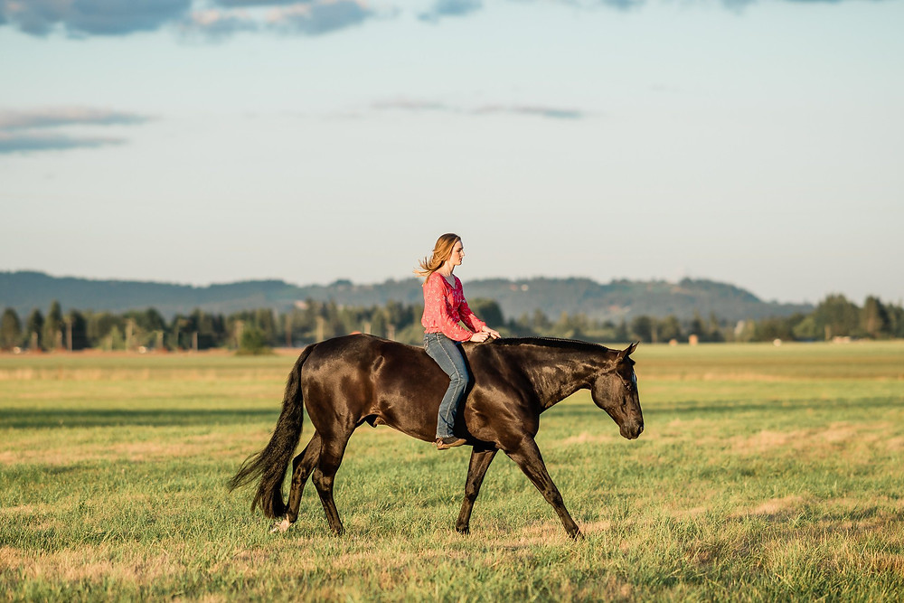 Alyssa loping Danny bareback and bridleless in the field