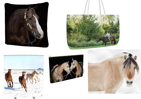 everyday items such as a pillow, pencil pouch, and blanket with photgraphs of horses printed on them