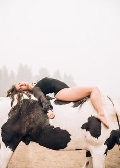 Kenzi Rogers | Gypsy Vanner | Pleasant Valley Stables
