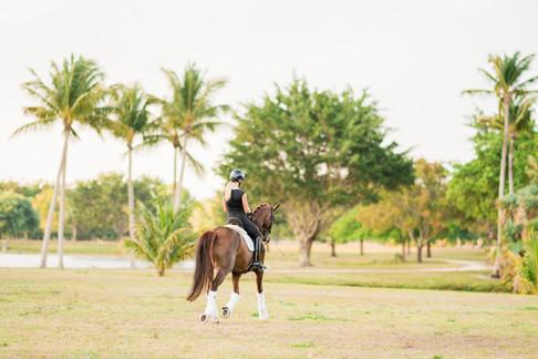 Amanda Perkowski | Wellington, FL | Helgstrand Dressage