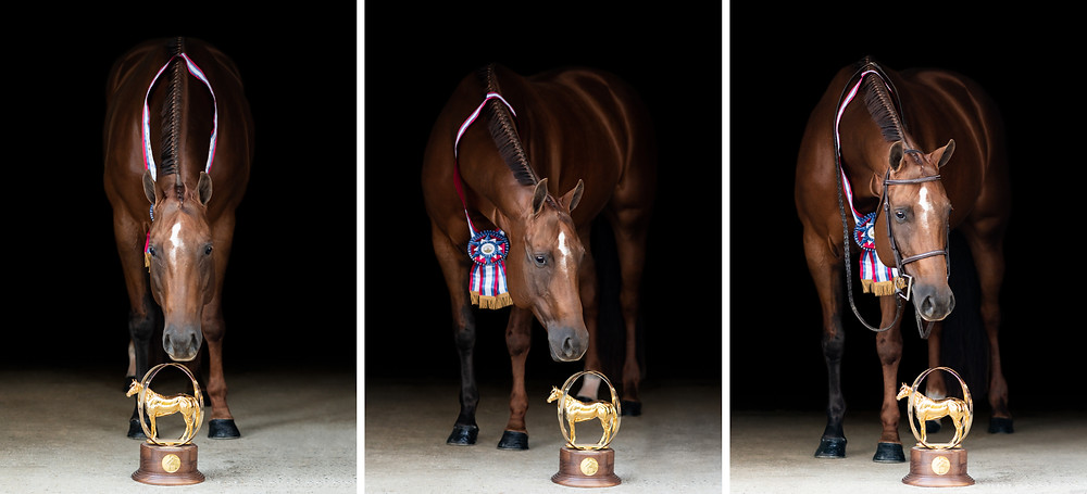 Legacy looking down at her world champion globe