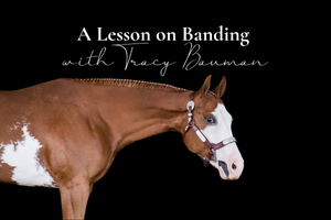 A Lesson on Banding, by Tracy Bauman