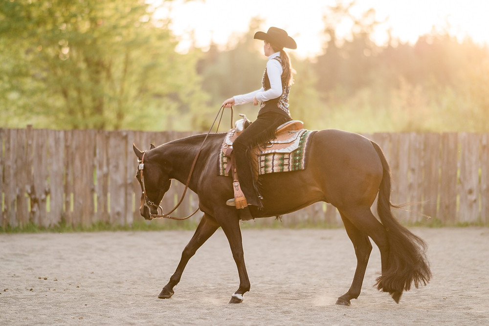Shelby loping Manny in the outdoor arena at Edward Higbee's barn in Lake Stevens, WA at sunset