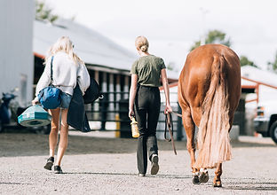 a girl and her mom walking with their horse at a horse show