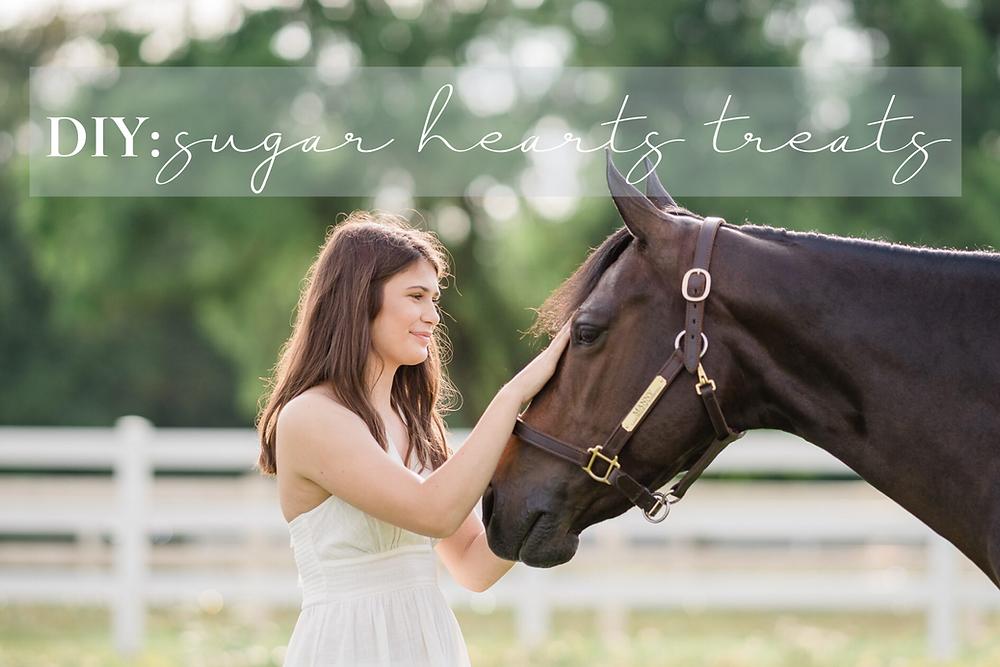 DIY: Sugar Hearts Horse Treats