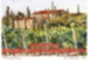 Montalcino1.jpg