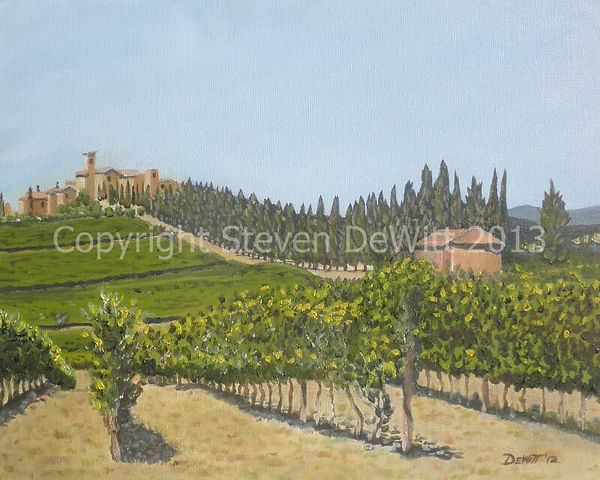 Montalcino Vineyard copyright.jpg
