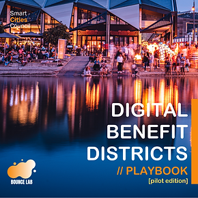 Digital Benefit Districts Playbook_ Pilo