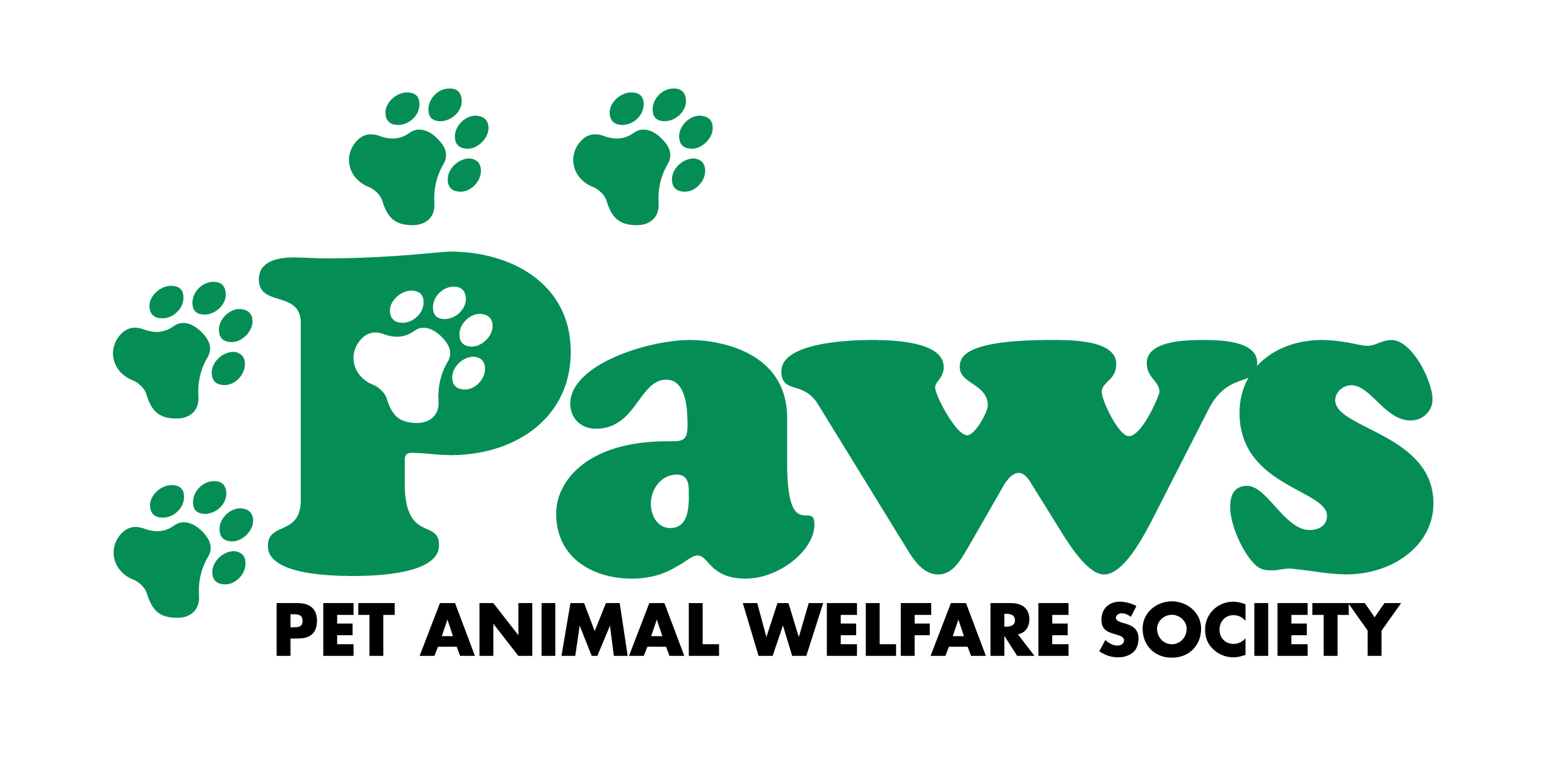 Cat and Dog Adoption at PAWS in Norwalk, CT