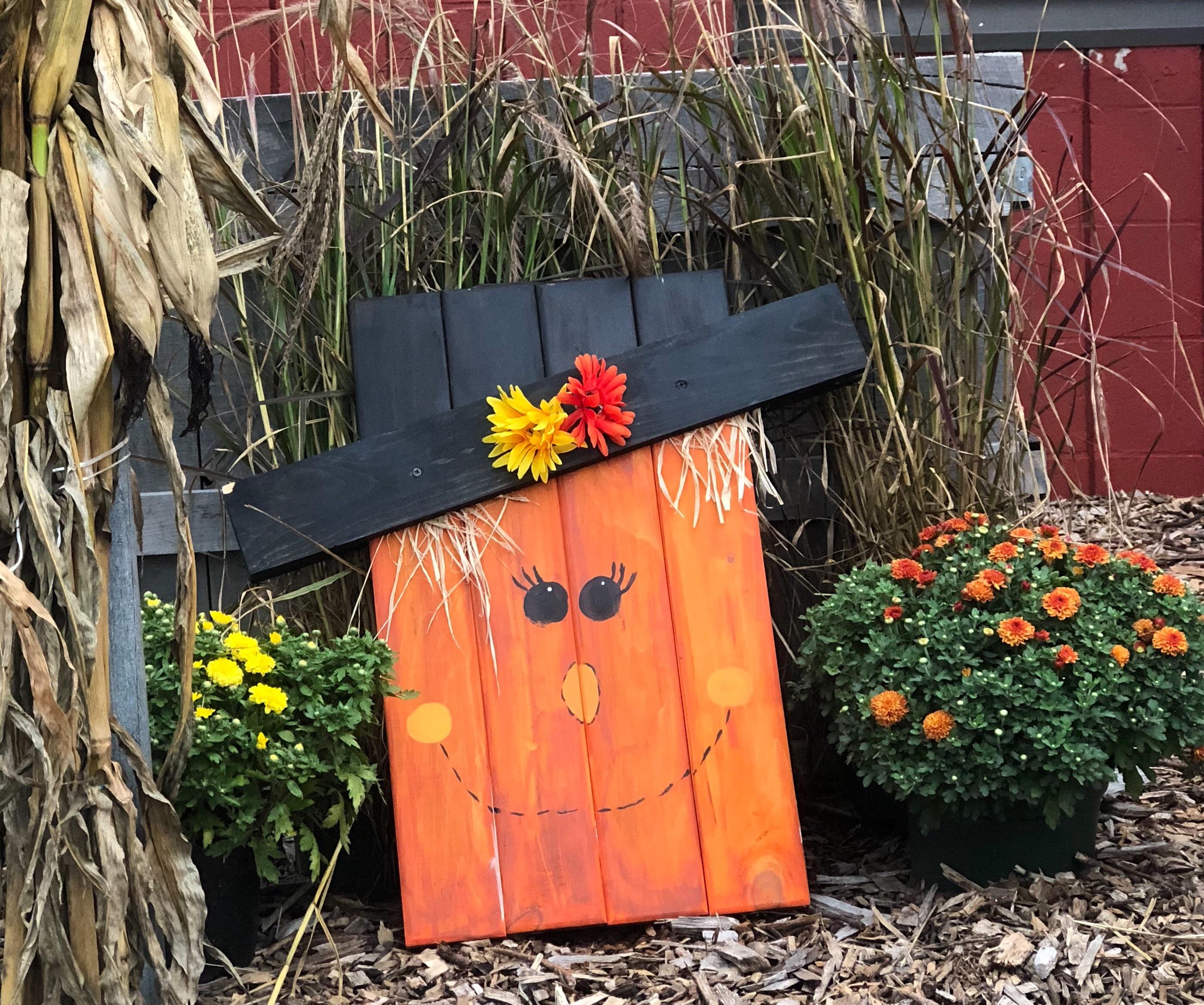#203 Scarecrow