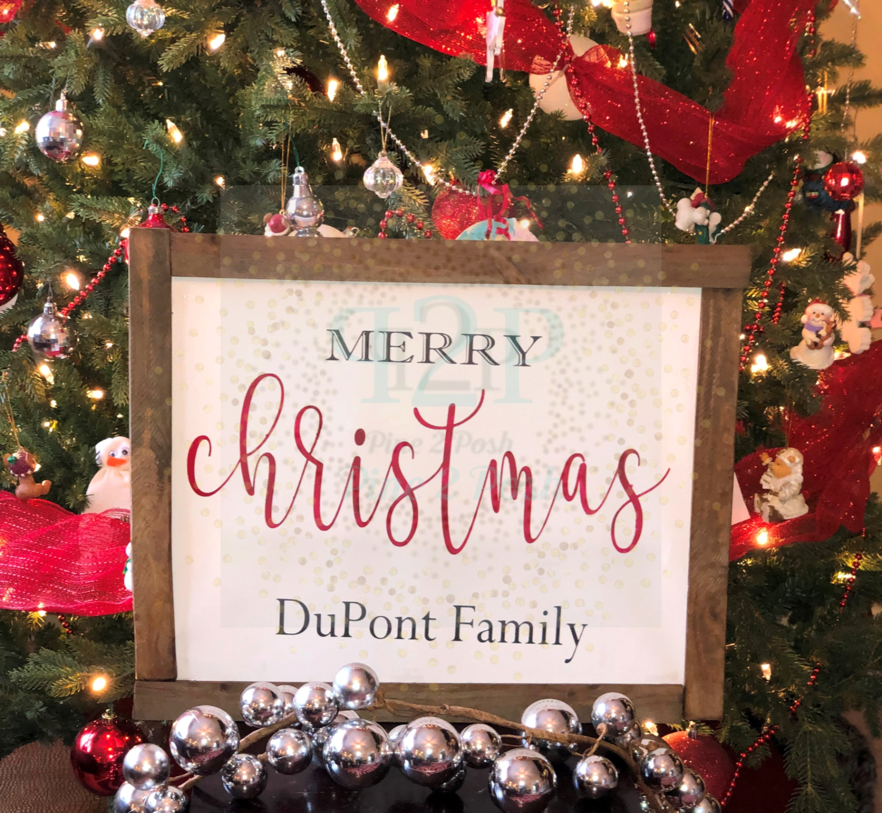 226 FAMILY CHRISTMAS (1)
