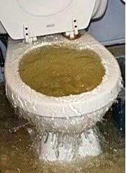 WC, toilettes bouchées