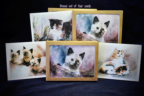 Set of kitten notecards (sku #104)