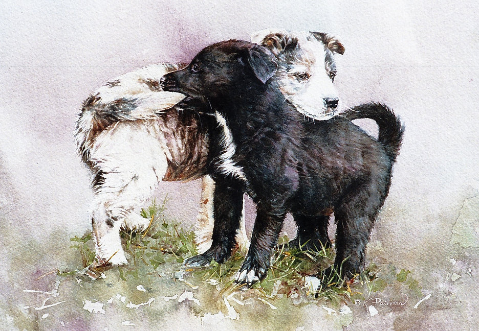 as these two puppies wrestle, one holds the other's tail, watercolor by Kathy Paivinen