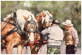 Two Belgian Horses tacked up, watercolor by Kathy Paivinen