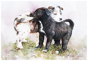 puppies wrestling, watercolor by Kathy Paivinen