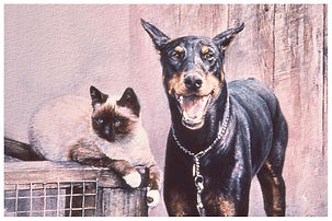 Cat and Doberman are an unlikely pair, watercolor by Kathy Paivinen