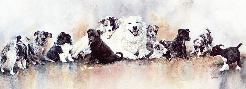 watercolor painting, mother dog with ten puppies by Kathy Paivinen, Greenwich Workshop Artist's proof