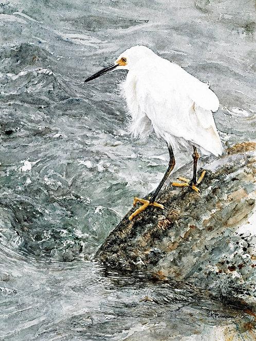"Notecard (sku #02)""Smart Fishing"" (Snowy Egret) fine art card & env.(Item #02)"