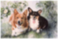 watercolor of two Corgis by Kathy Paivinen