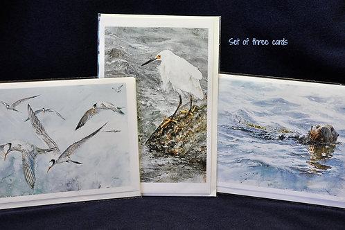 Set of 4 notecards (sku #102) lge art cards and 4 env. Moss Landing Wildlife