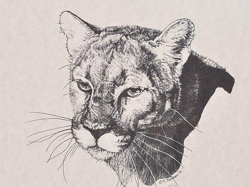 Mountain Lion Scratchboard Print