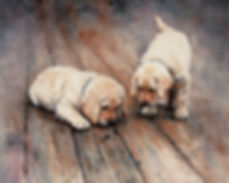 two curious lab puppies watch pillbugs, watercolor by Kathy Paivinen