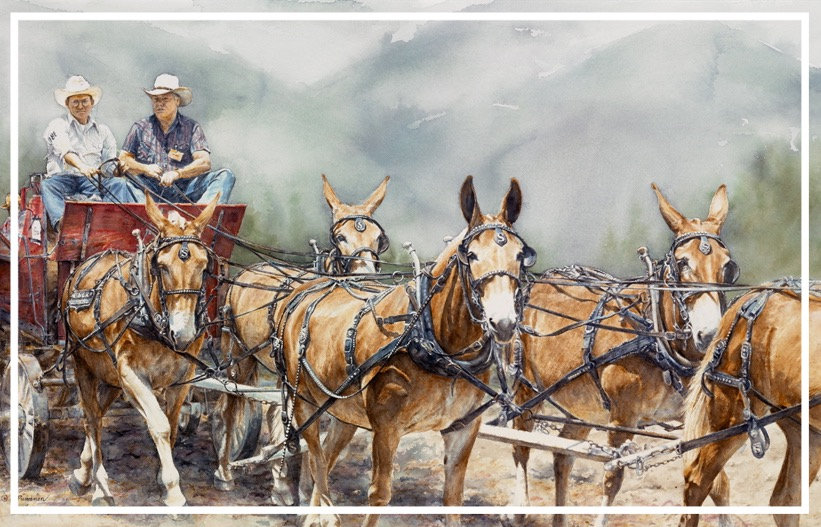 mule team pulling wagon at Mule Days in Bishop, CA, watercolor by Kathy Paivinen