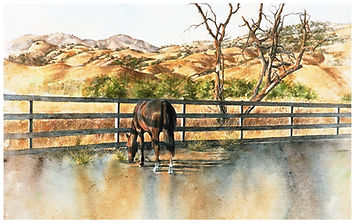 Horse in evening sun, watercolor by Kathy Paivinen