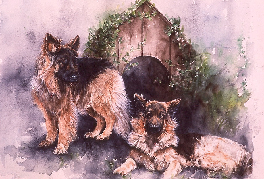 long-haired German Shepherds, watercolor by Kathy Paivinen