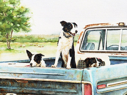 "Notecard (sku # 06)""Ready and Willing""(border collies) fine art card & env."