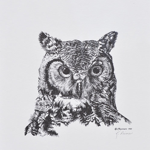 Great Horned Owl Scratchboard Print