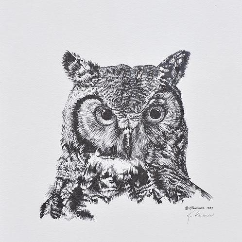 Great Horned Owl Scratchboard Print