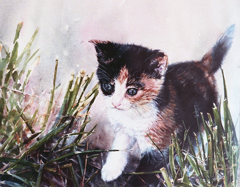 kitten exploring outside is ready for anything, watercolor by Kathy Paivinen