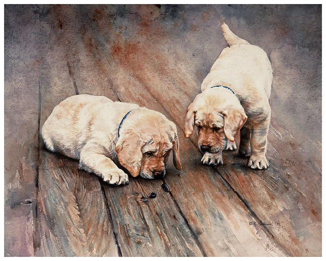 watercolor painting, two Labrador Retriever pups, curious about pillbugs, Kathy Paivinen, print