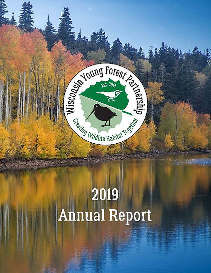 WYFP 2019 Annual Report_Page_01.jpg