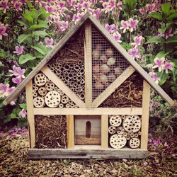 Insect Hotel 3