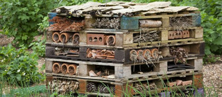 Insect Hotel 1