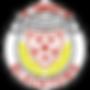 BDSFA--320x320.png
