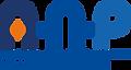 logo-ANP_DEF-1068x571.png