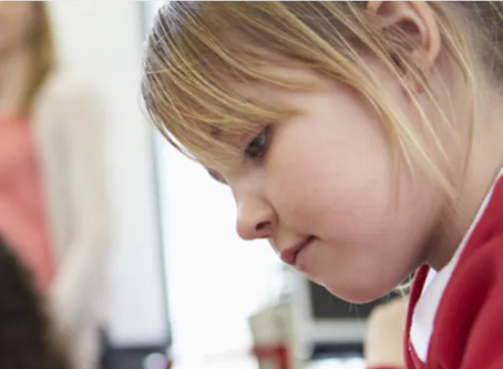 How to identify, understand and teach gifted children
