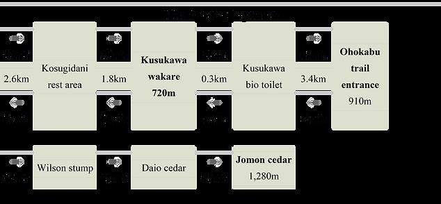jomon image 2.png