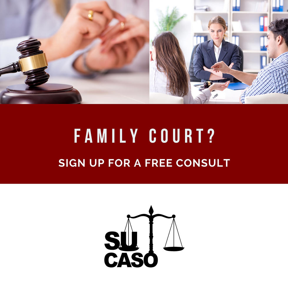Su Caso Family Court Flyer 1.png