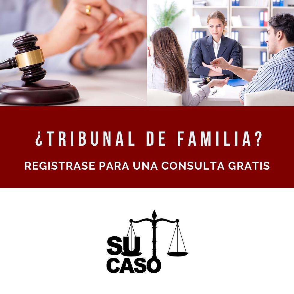 HA Su Caso Family Court Flyer 1.png