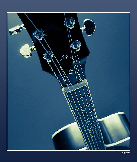 String the Blues