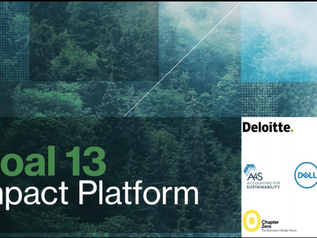 Goal 13 Impact Platform