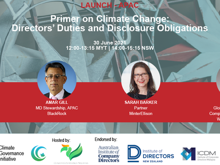 Primer on climate change: Directors' duties and disclosure