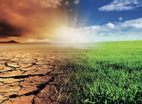 The Net-Zero Challenge:Fast-Forward to Decisive Climate Action