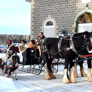 710 Excursions - Winter Wedding Sleigh